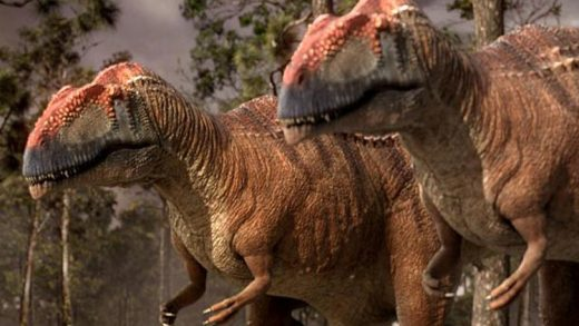 حمله گلهای ماپوساروسها به بزرگترین دایناسورهای ماقبل تاریخ | فیلم