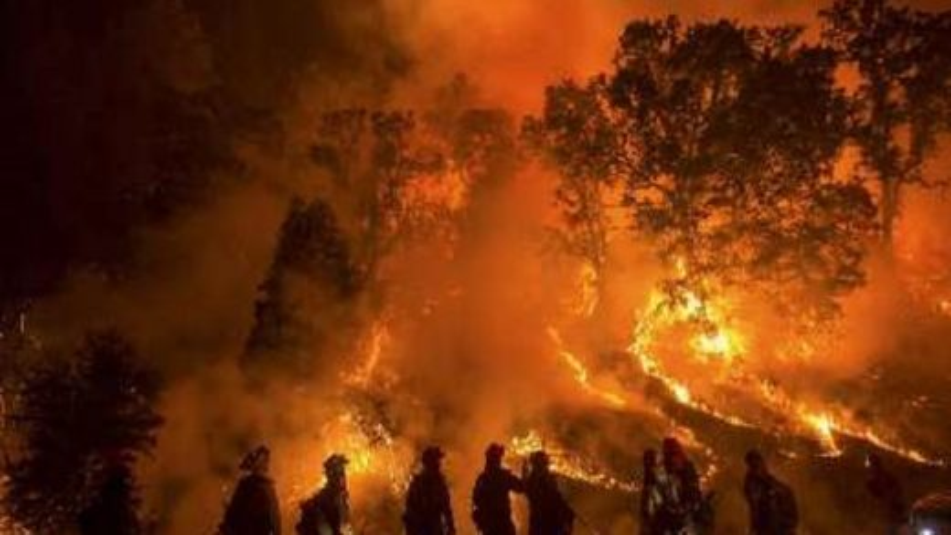 آتش سوزی درکالیفرنیا | تگ