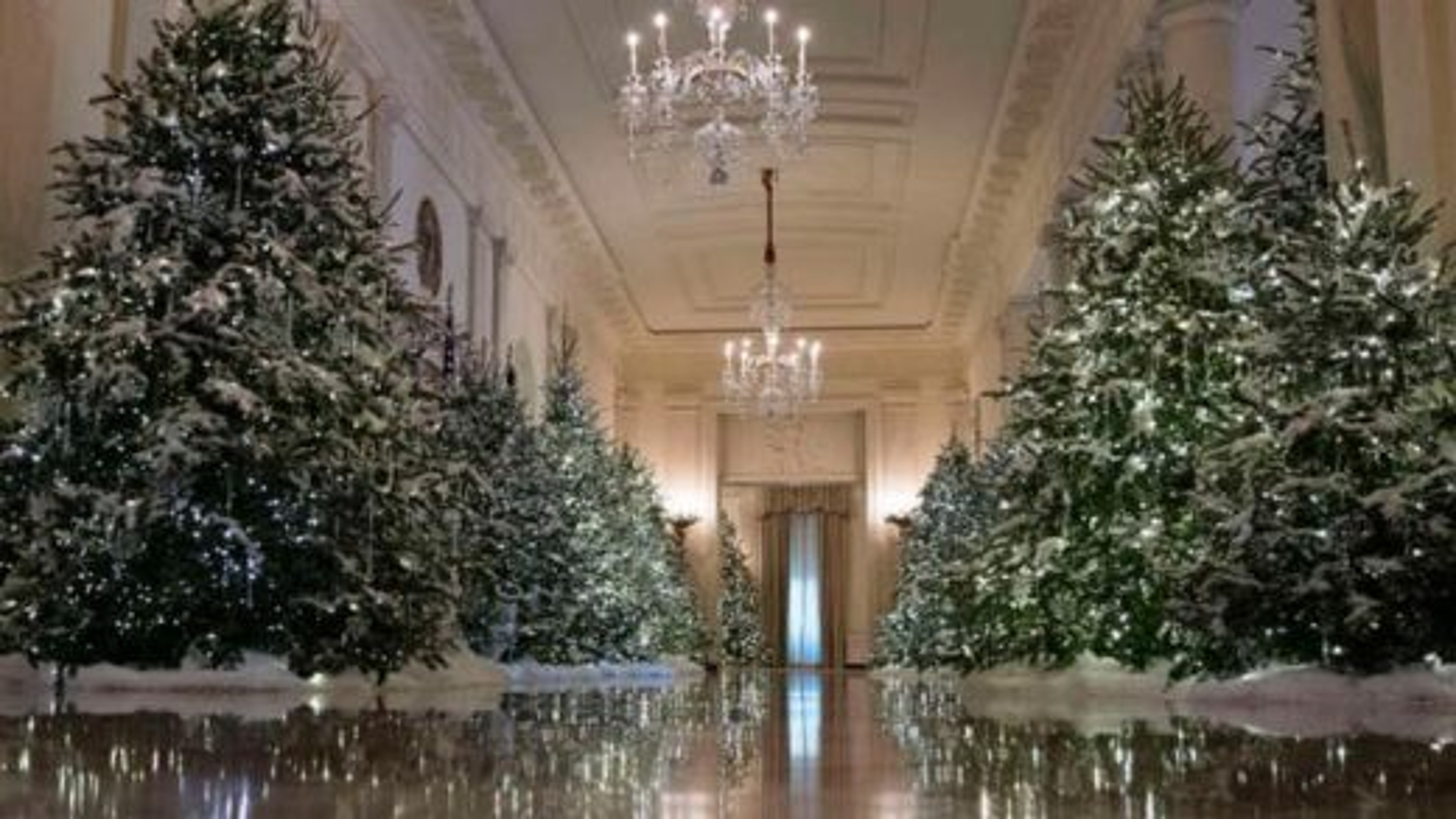 دکور-کریسمس | تگ