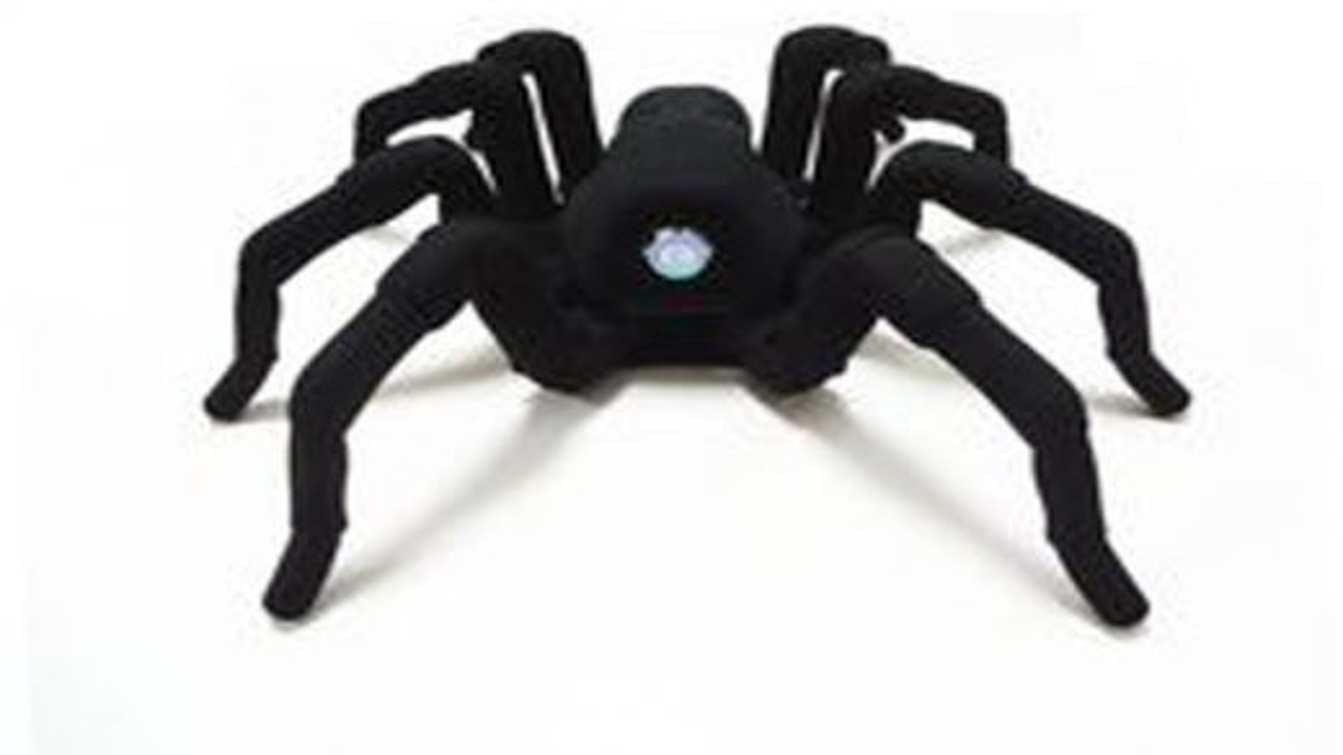 عنکبوت-تی-8 | تگ