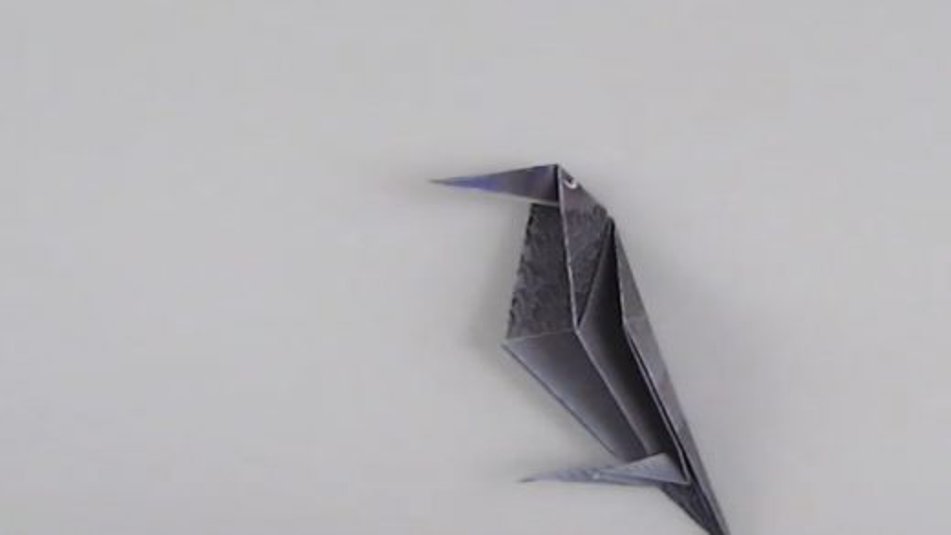 اوریگامی کلاغ | تگ