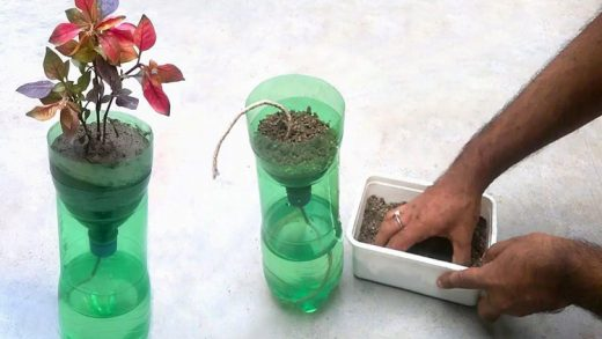 سیستم آبیاری گیاهان   تگ
